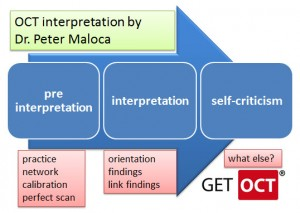 Steps of interpretation OCT by Dr Maloca