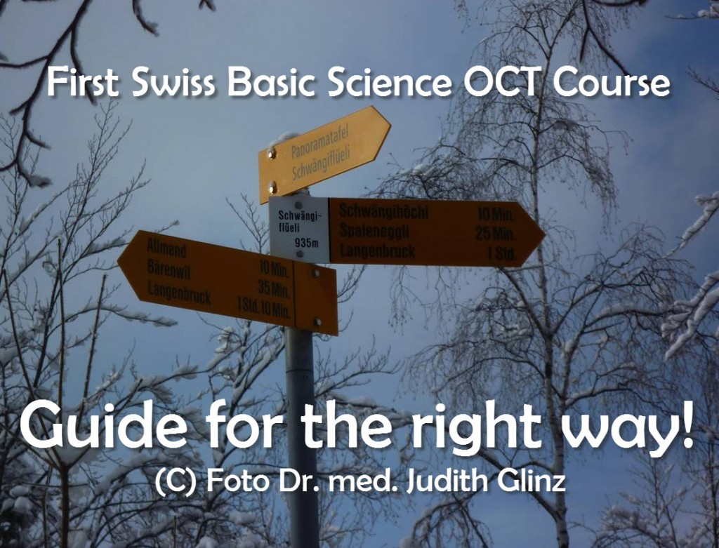 The right guide! Swiss Basic OCT Science Course Dr Judith Glinz